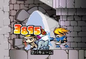 Maple4599a.jpg