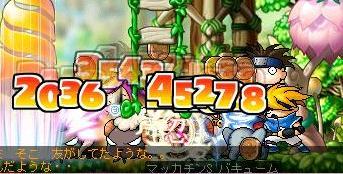 Maple4621a.jpg