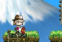 Maple4688a.jpg