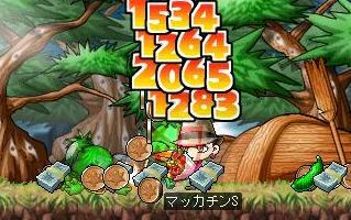 Maple4702a.jpg