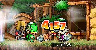 Maple4707a.jpg