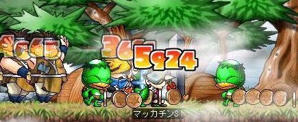 Maple4738a.jpg