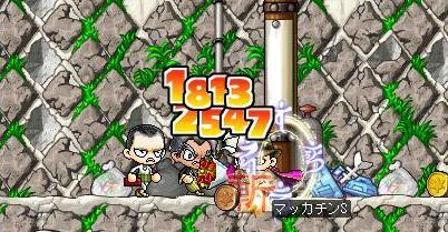 Maple4786a.jpg