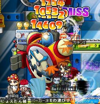 Maple4806a.jpg