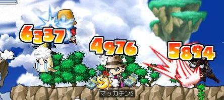 Maple4819a.jpg