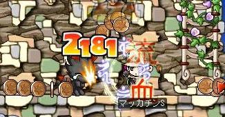 Maple4828a.jpg