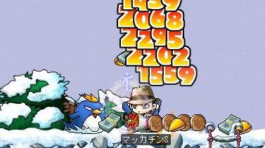 Maple4863a.jpg