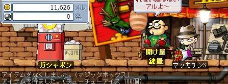 Maple4867a.jpg