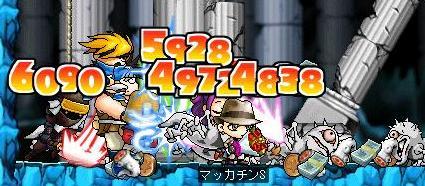 Maple4869a.jpg