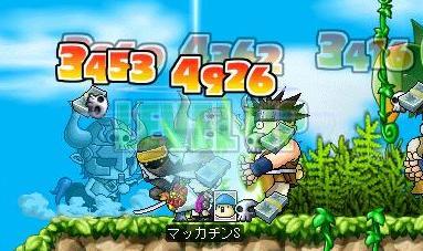 Maple4883a.jpg