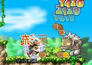 Maple4894a.jpg