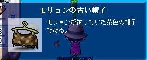 Maple4895a.jpg