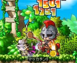 Maple4914a.jpg