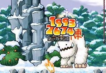 Maple4929a.jpg
