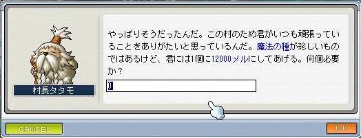 Maple4970a.jpg