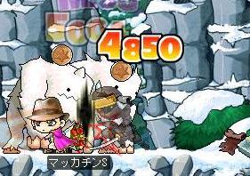 Maple5038a.jpg