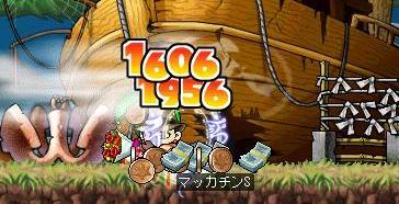 Maple5054a.jpg