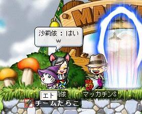 Maple5132a.jpg