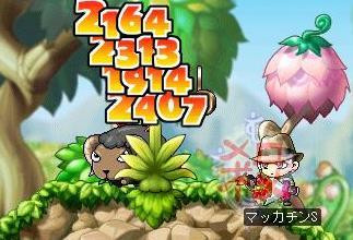 Maple5134a.jpg
