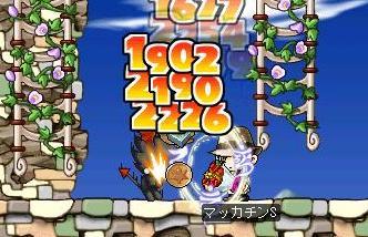 Maple5205a.jpg