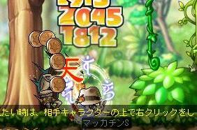 Maple5220a.jpg