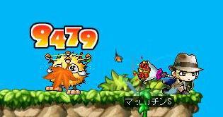 Maple5221a.jpg
