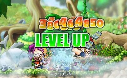 Maple5281a.jpg