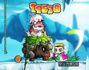 Maple5333a.jpg