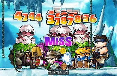 Maple5347a.jpg