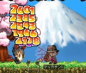 Maple5383a.jpg