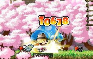 Maple5387a.jpg