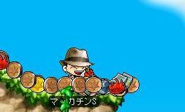 Maple5395a.jpg