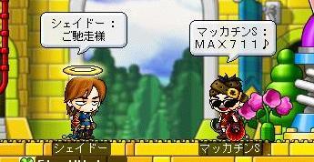 Maple5478a.jpg