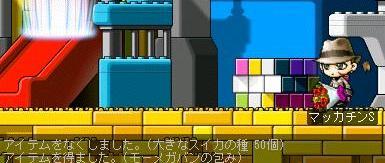 Maple5751a.jpg