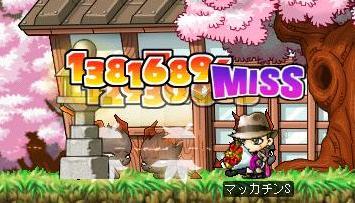 Maple5836a.jpg