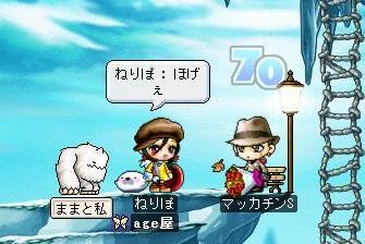 Maple5891a.jpg