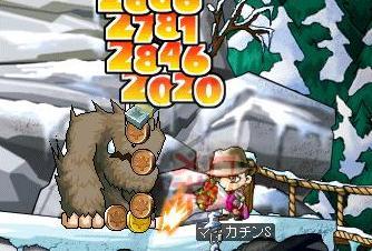 Maple5899a.jpg