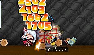 Maple5972a.jpg