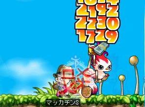 Maple6035a.jpg