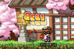 Maple6061a.jpg