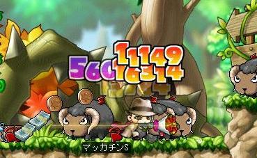 Maple6158a.jpg