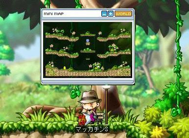 Maple6200a.jpg