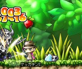 Maple6206a.jpg