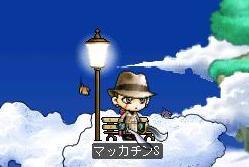 Maple6302a.jpg