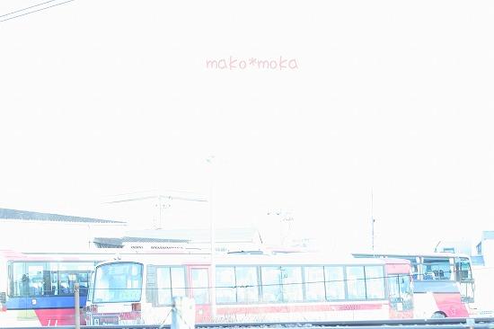 mIMG_2208のコピー