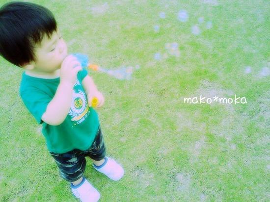 IMG_0700のコピー