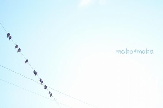mIMG_2214のコピー