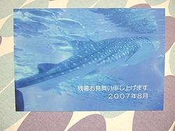20070826-01.jpg
