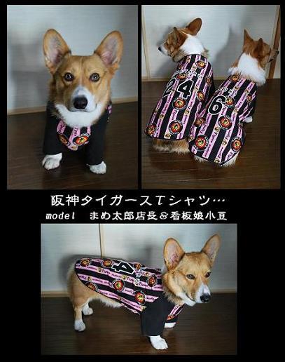 阪神タイガースTシャツ。