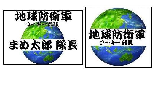 地球防衛軍 ゼッケン&マーク